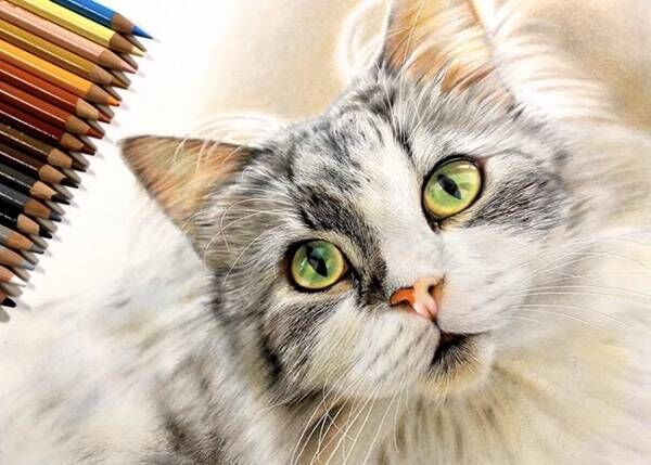 透き通る目をした猫ちゃん… その『制作過程』に「嘘でしょ…」「すごすぎる」