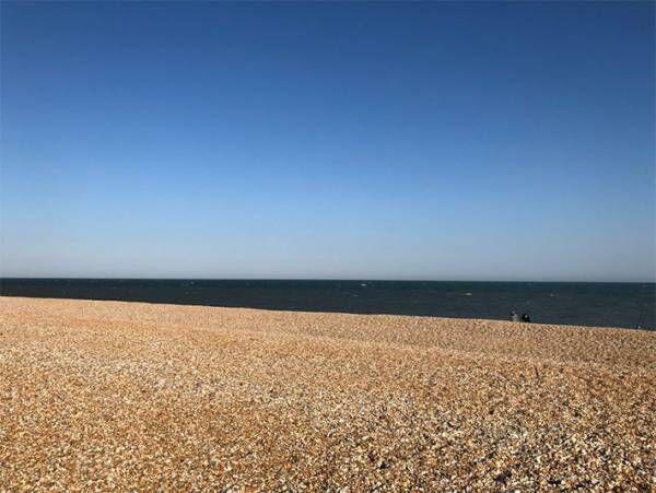 海辺で優雅な休日を過ごすはずが… 目前の光景に、あ然 「この世の果てですか」