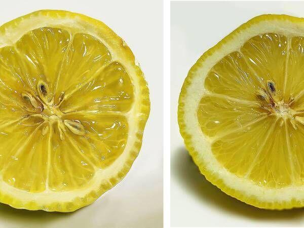 描いたレモンはどっち? Twitterの投稿に「一瞬混乱した」「クオリティすごい」の声