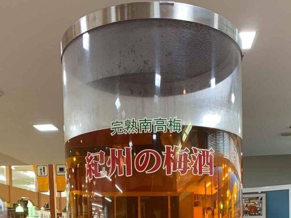 インパクトがスゴい…和歌山のアンテナショップにある「紀州の梅酒」とは!