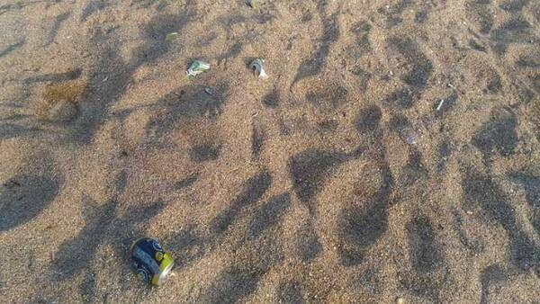「一番困るのがこれ」 浜辺で撮影された写真2枚、その意味に怒りが込み上げる