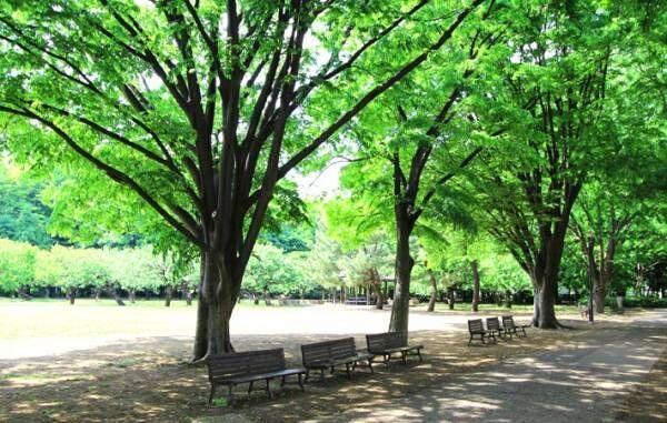 自然を感じられる場所で、静けさを味わう時間を持つこと