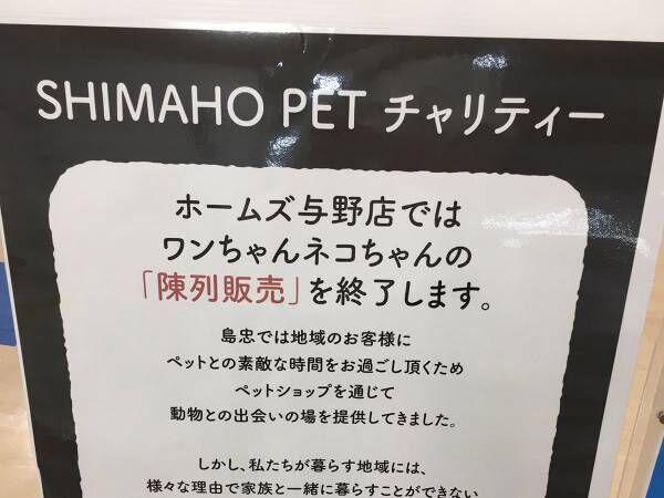 「ペットの陳列販売をやめます」 続く文言に「素晴らしい」「強く希望」の声