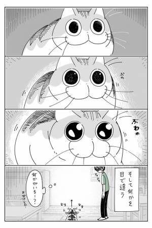 何もないところをジッと見つめる猫 飼い主が目線を合わせると?