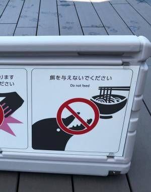 「イルカに餌をあげないで」 水族館の看板にクスッ! なぜなら描かれたのは?