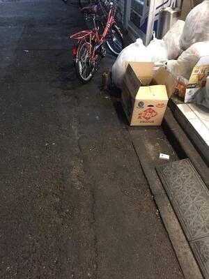 深夜の歌舞伎町で『取っ組み合いのケンカ』 激写した写真に24万人が『いいね』