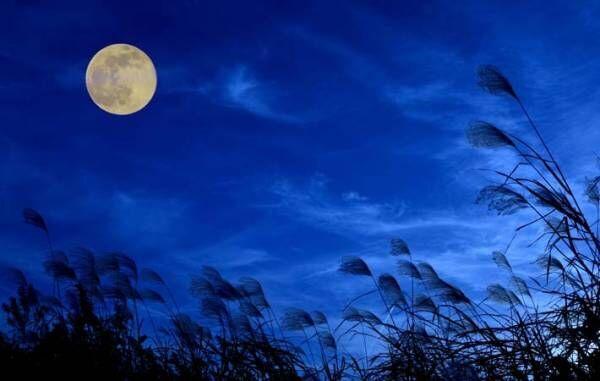 秋の夜空に光々と輝く名月 コロナ禍を忘れて、静かに味わってみる