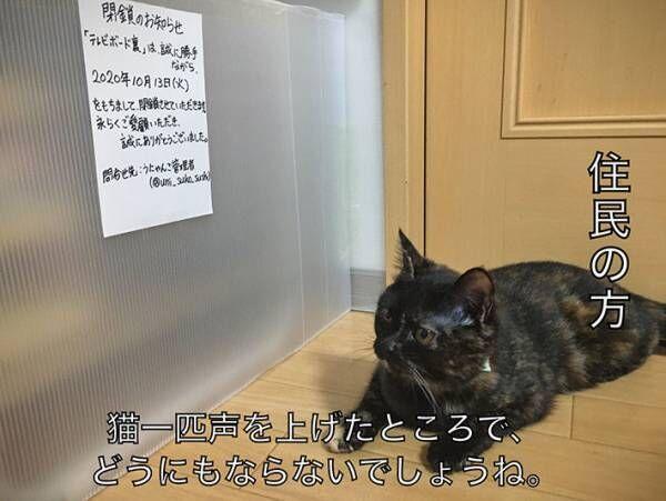 貼り紙を見て肩を落とす猫 書いてあった内容に「声出して笑った」の声