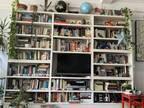 「この本棚に猫が隠れています」 見つけられずにギブアップする人が続出