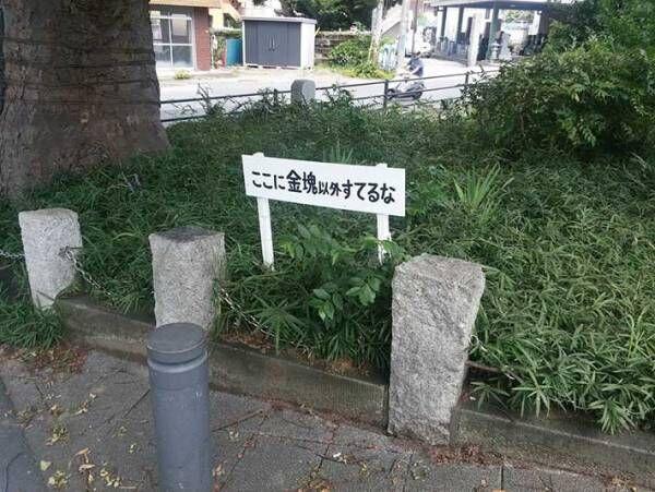 公園で見付けた『注意書き』 左側を見てみると…?