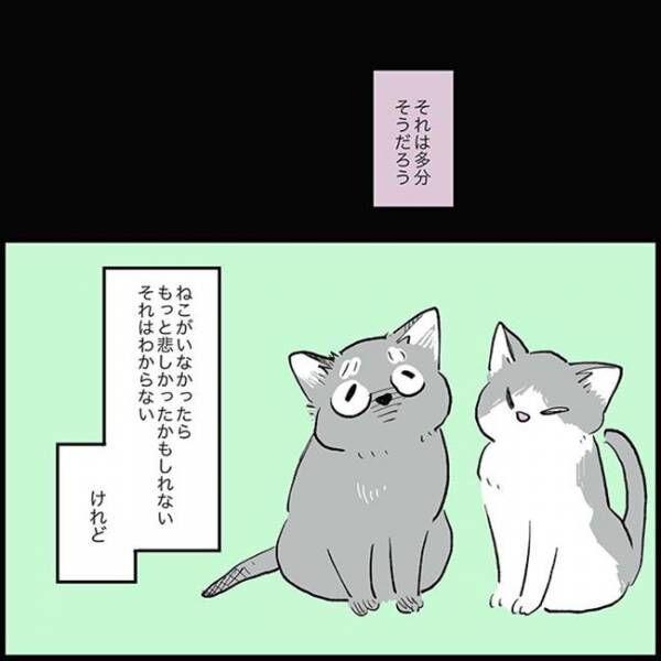 猫飼い初心者「2匹飼いませんか?」といわれ… その後の展開に、ほっとする