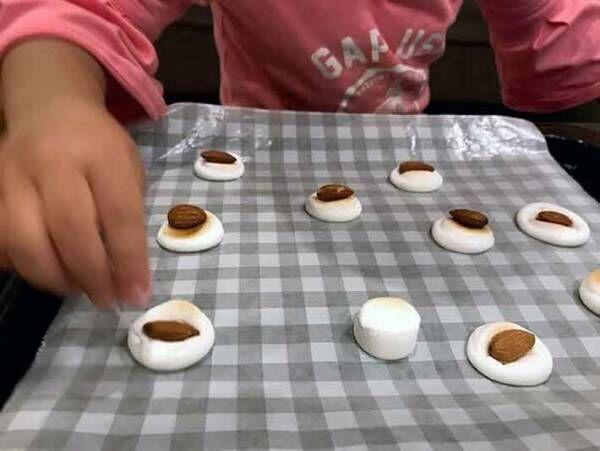 簡単サクうま!マシュマロクッキーを子供と一緒に作ってみた