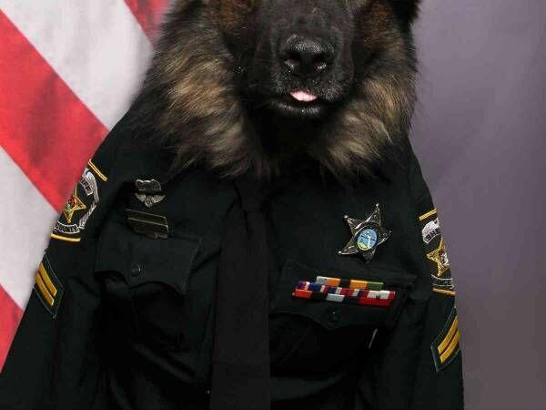 Orange County Sheriff\'s Office, Florida