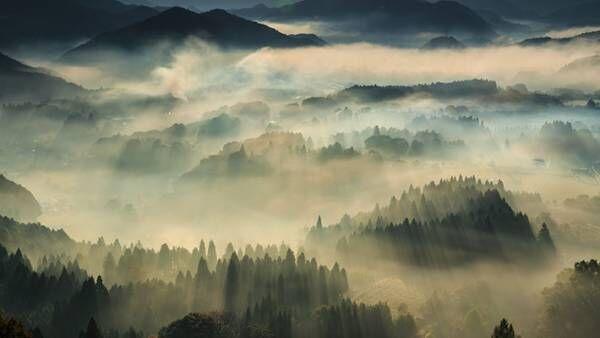 古い美術作品? 実はこれ…京都で見られる奇跡の絶景だった!
