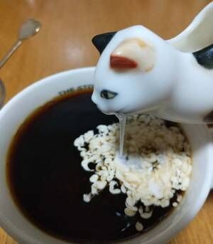 「破壊力強すぎ」「笑いすぎて腹痛い」 ミルク差しの『致命的な欠点』に爆笑