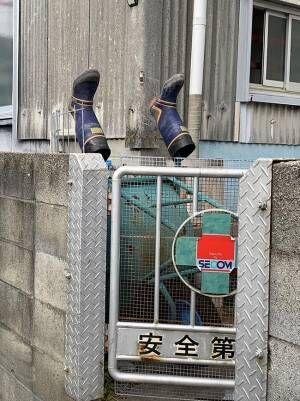 「大丈夫ですかー!?」 塀から落ちて、ひっくり返った? 助けに駆け寄ると…