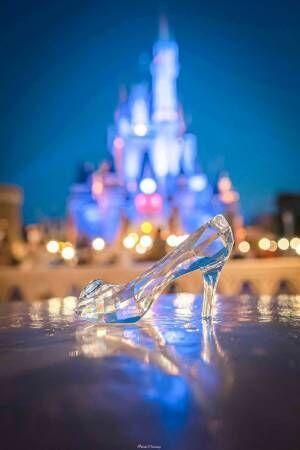 シンデレラ城を背景に靴を置くと…? 完成した写真に18万いいね!