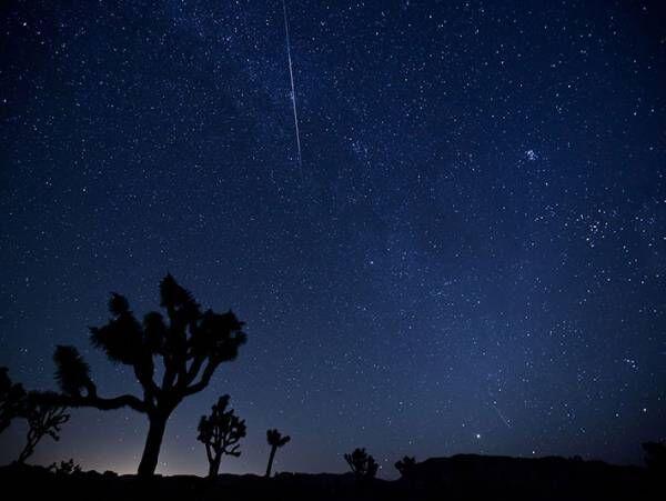 ふたご座流星群が見頃に! 1時間あたり55個前後の流星が見られる時間帯は?