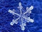 『雪の結晶』をスマホで撮るには? 気象学者の投稿が話題 「コレはやってみたい」