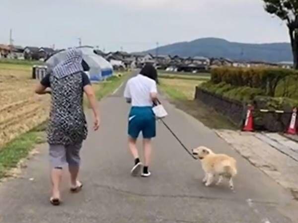 「明らかにおばあちゃんじゃないんだよなあ…」 犬と一緒に歩く人の正体は?