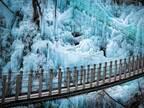 自然が作り出した『冬の絶景』に、感動の声が続出 「幻想的」「映画に出てきそう」