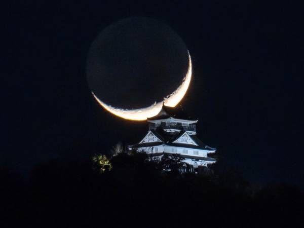 「夢のコラボ」「めっちゃカッコいい」 岐阜城を写した1枚に、5万人が『いいね!』