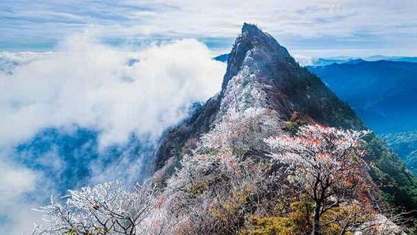 この世のものとは思えない美しさ!珍しい霧氷に感動の声