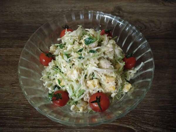 卵が入って彩りもキレイ あと一品という時にパパッと作れる『キャベツと豆苗の簡単サラダ』
