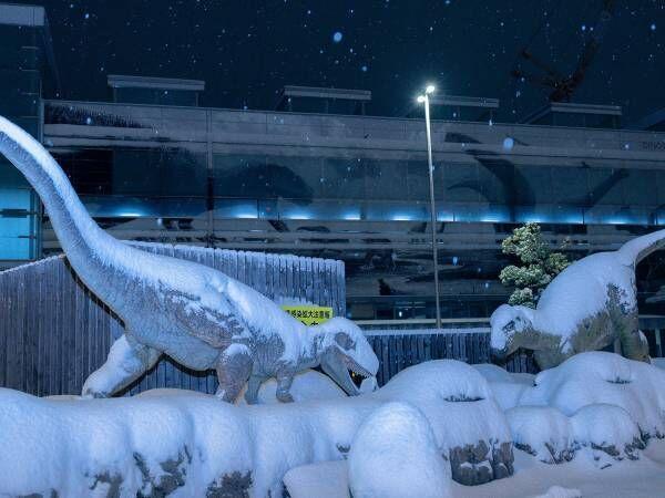 「寒波に襲われた福井駅が完全に氷河期」 写真を見たら、マジだった…