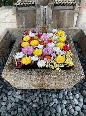 寺の手水で2度も盗難被害にあった寺 優しい人が救いの手を差し伸べ、数日後に急展開!