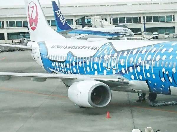 「飛行機に子供ができてた!」 那覇空港での1枚が「最高の光景」と話題に