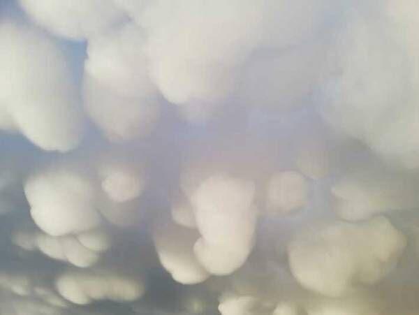 「初めて見た」「これはすごい」 雨あがりに出現した『雲』に15万人が心奪われる