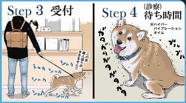 柴犬を予防接種に連れていくと…? 続く展開に共感の声が続出!
