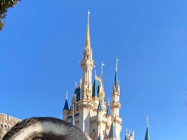 シンデレラ城の撮影中、割り込んできたのは? 「笑った」「ディズニーあるある」