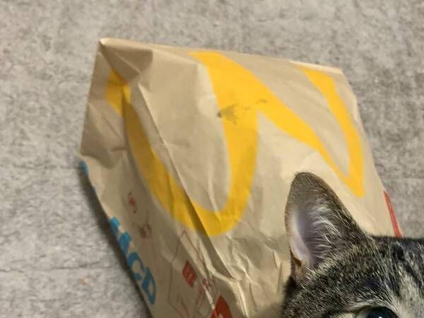「どこで買える?」「プライスレス」 マクドナルドの紙袋に入っていたのは…