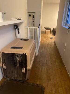 帰宅すると出迎えてくれるはずの犬が、ハウスから出てこない理由に「やめてもらいたい」