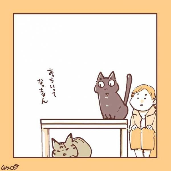 妹猫が大好きだった兄猫が、避けるようになり… 「ラストに胸がギュっとなる」