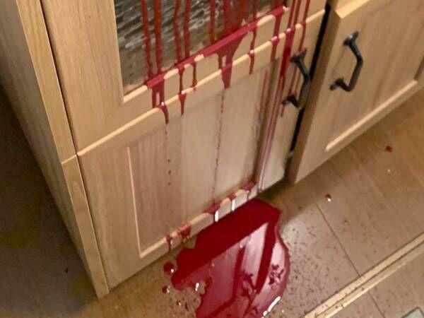 自宅内で流れたおびただしい血痕 意外な正体に衝撃が走った