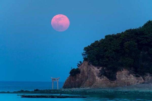 6月24日の夜は『ストロベリームーン』! 特別な満月といわれる理由は?