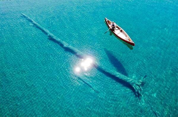 「ここはどこ」「透明度が群を抜いてる」 湖で撮影された1枚に、驚愕の声