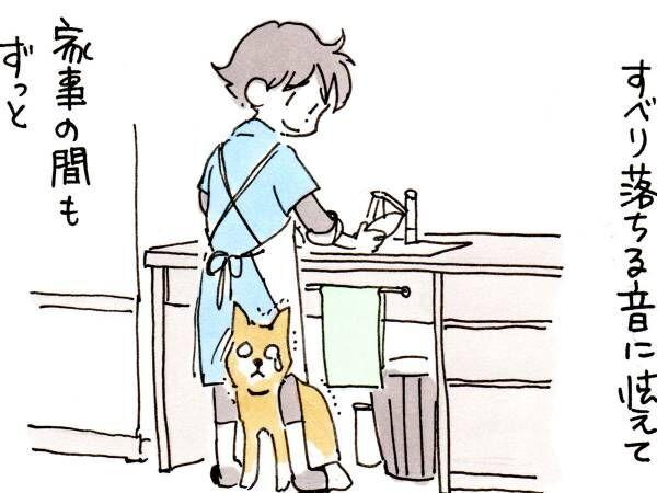 子供の頃いつも足元で音に怯えていた犬 17歳になった現在の様子に泣ける