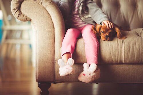 ペットを飼っていて赤ちゃんを授かった!ペットと子どもの共存で気を付けたいこと