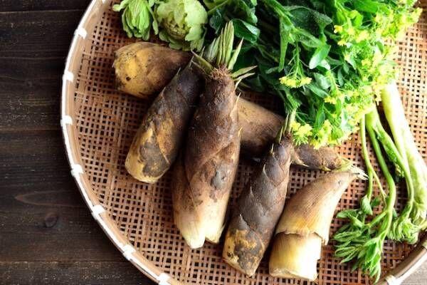 旬の食材!春野菜を食べて春ダメージを癒しましょう