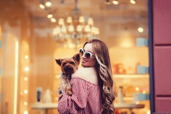 ペット一筋イタい 恋愛をしたい動物を飼う注意点