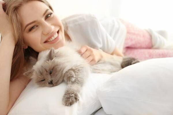 独身女性が猫を飼うメリットとは?