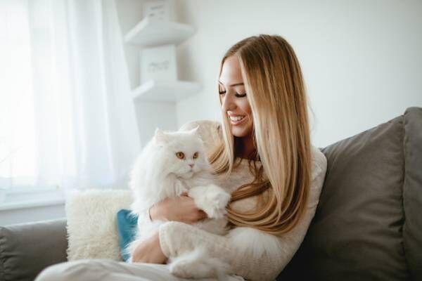 独身女性が猫を飼うメリットとは?2