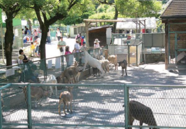 ドキドキワクワク、たくさんの動物と触れ合えるオトナも楽しい公園4選【家族で週末の公園へ!】