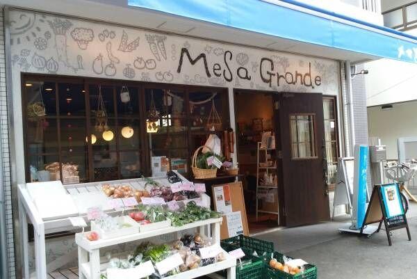 武蔵新城ってどんなところ?ターミナル駅へ利便性もよく駅前には商店街が9つも!