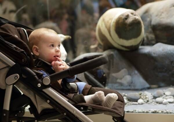 赤ちゃんと一緒に美術館へ!0歳からのアート入門