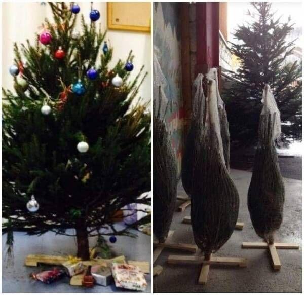 【フランスからの報告】フランスのクリスマス